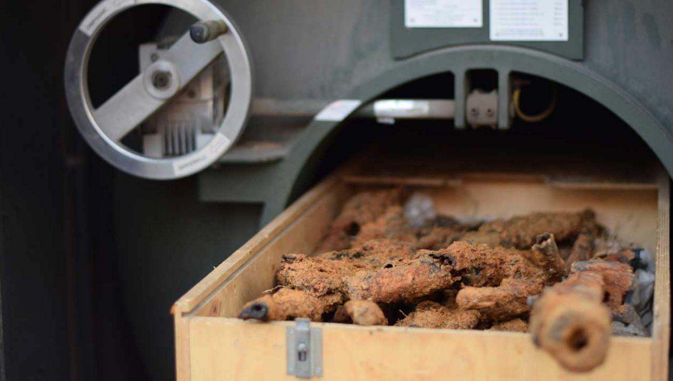Obok dawnego garażu PUBP odkryto cenne zabytki archeologiczne - ok. 20 sztuk broni palnej, która mogła należeć do partyzantów (fot. TT/Poszukiwania IPN)