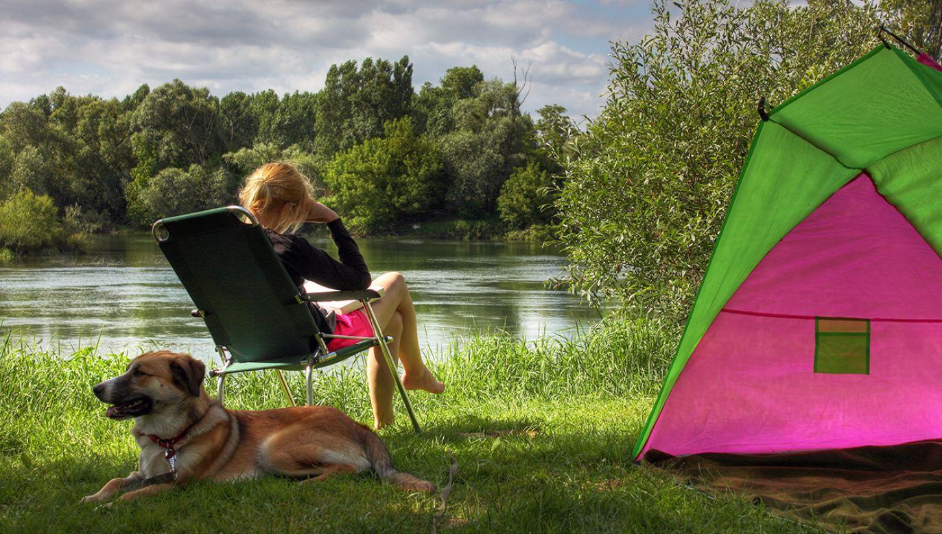 Lato na razie nigdzie się nie wybiera (fot. Shutterstock/Mark Wolters)