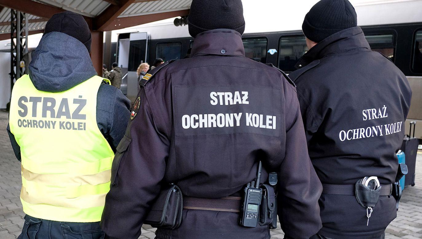 Grozi mu kara do 3 lat pozbawienia wolności (fot. arch. PAP/Darek Delmanowicz)