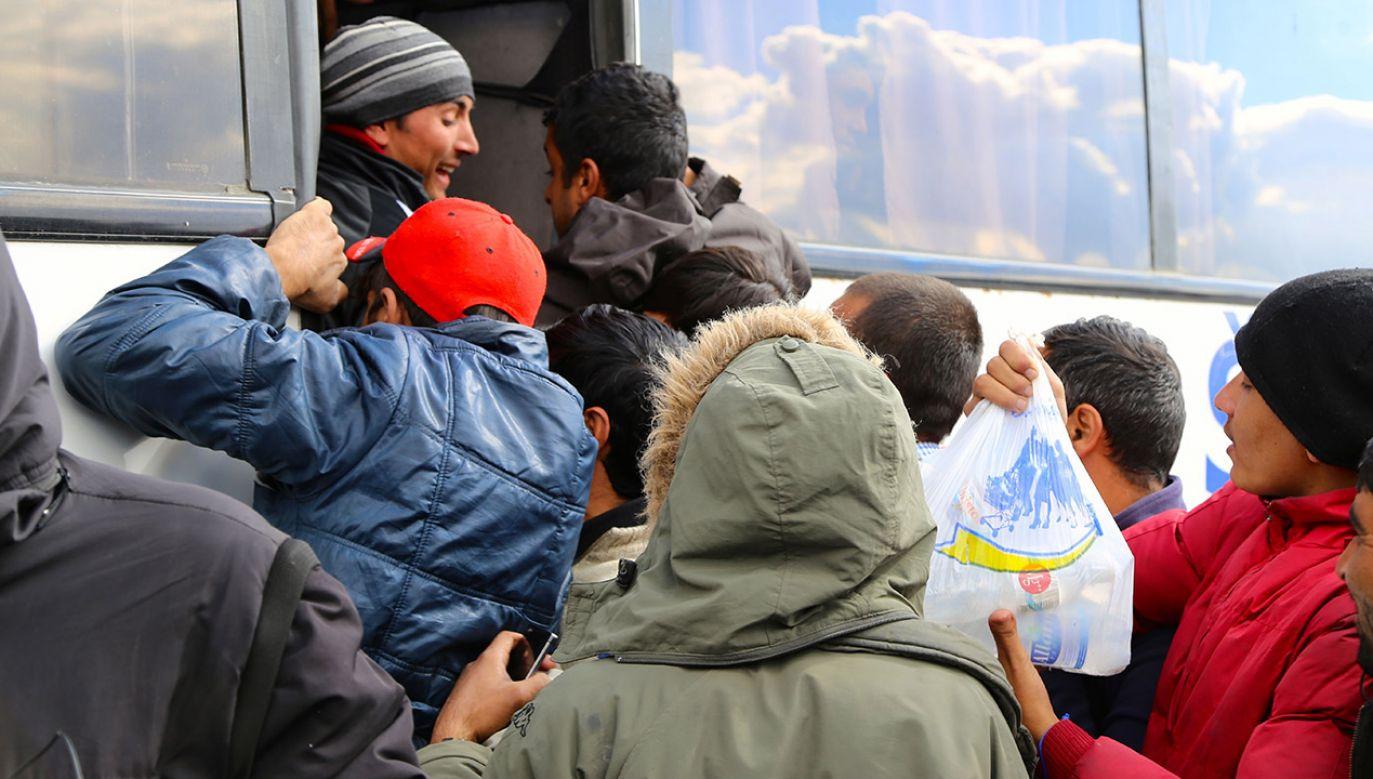 Niemiecki  brukowiec zapowiada dalsze śledztwo w tej sprawie. (fot. Talha Ozturk/Anadolu Agency/Getty Images)