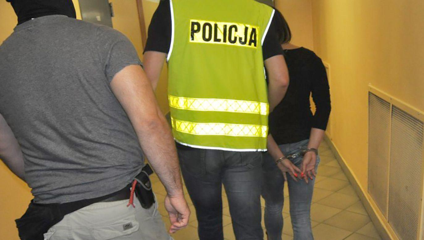 Policjanci nie wykluczają kolejnych zatrzymań w tej sprawie (fot. Śląska policja)