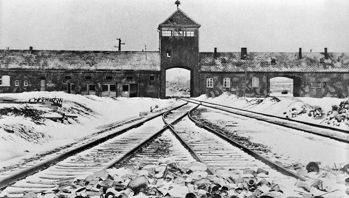 """Broszura zawiera trzy części: """"Ocaleni"""", """"Polska pod okupacją niemiecką"""" i """"Prawda o niemieckich obozach"""" (fot. Bettmann/Getty Images)"""