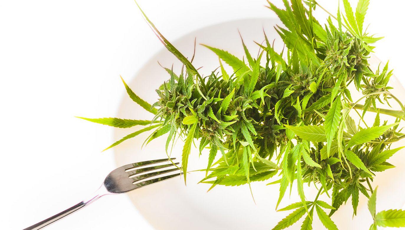 Ogrodnik amator twierdził, że z ich liści robił sobie sałatki (fot. Shutterstock/ElRoi)