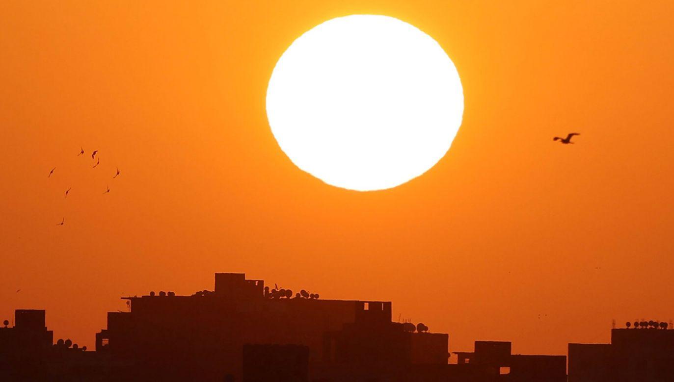 (fot. REUTERS/Mohamed Abd El Ghany)