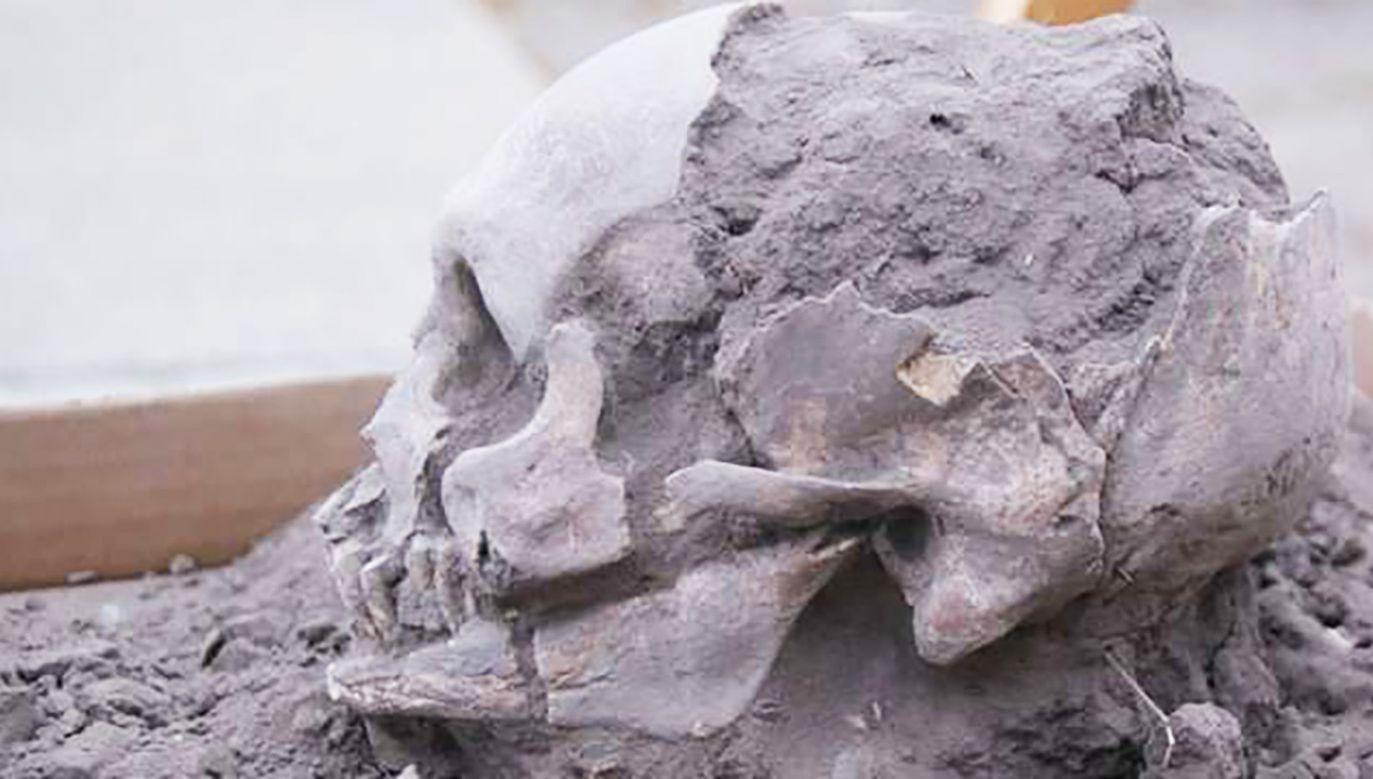 Odkryte na stanowisku groby to najstarsze ludzkie pochówki, jakie dotąd udało się odnaleźć na obszarze Ekwadoru (fot. Uniwersytet Dalekowschodni we Władywostoku)