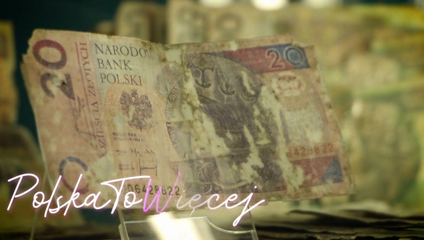 Zniszczone pieniądze w Centrum Pieniądza NBP (fot. portal tvp.info)