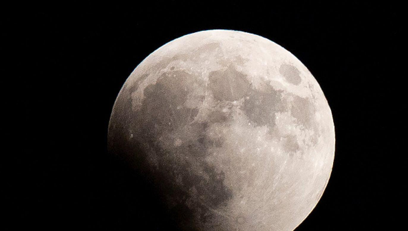 Zainteresowanie artefaktami związanymi z Księżycem jest w USA ogromne (fot. Nicolas Economou/NurPhoto via Getty Images)