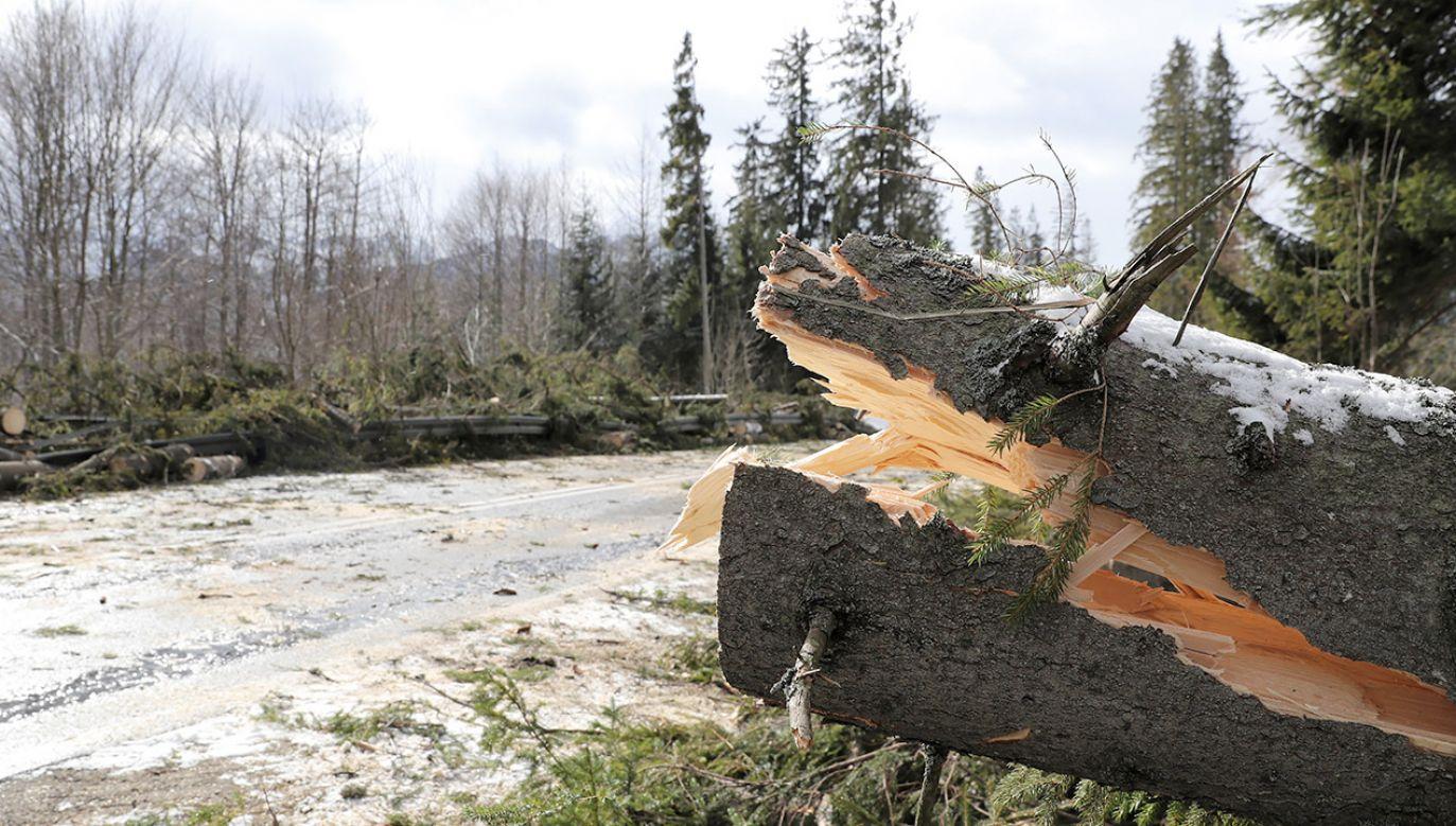 Zaleca się ostrożność oraz śledzenie komunikatów i sytuacji pogodowej (fot. PAP/Grzegorz Momot)