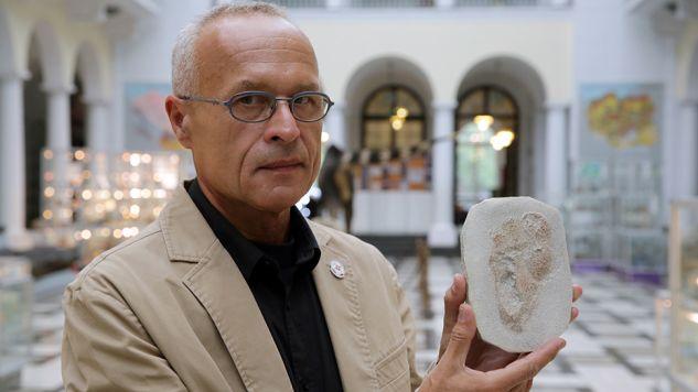Dr Gerard Gierliński odkrył ślady sprzed 5,7 mln lat  (fot. PAP/Tomasz Gzell)