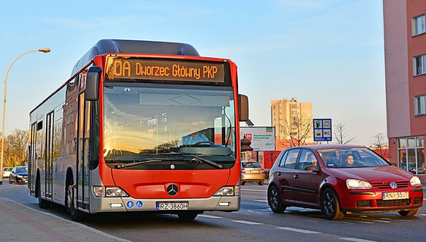 Studenci z zagranicy będą za darmo jeździć komuniakcją miejską w Rzeszowie (fot. Shutterstock/Martyn Jandula)