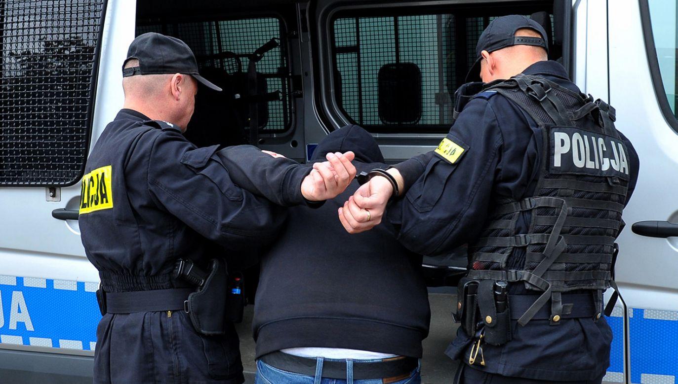 Policjanci w całym kraju odnotowali w tym roku wzmożoną liczbę zgłoszeń (fot. arch. PAP/Marcin Bielecki)