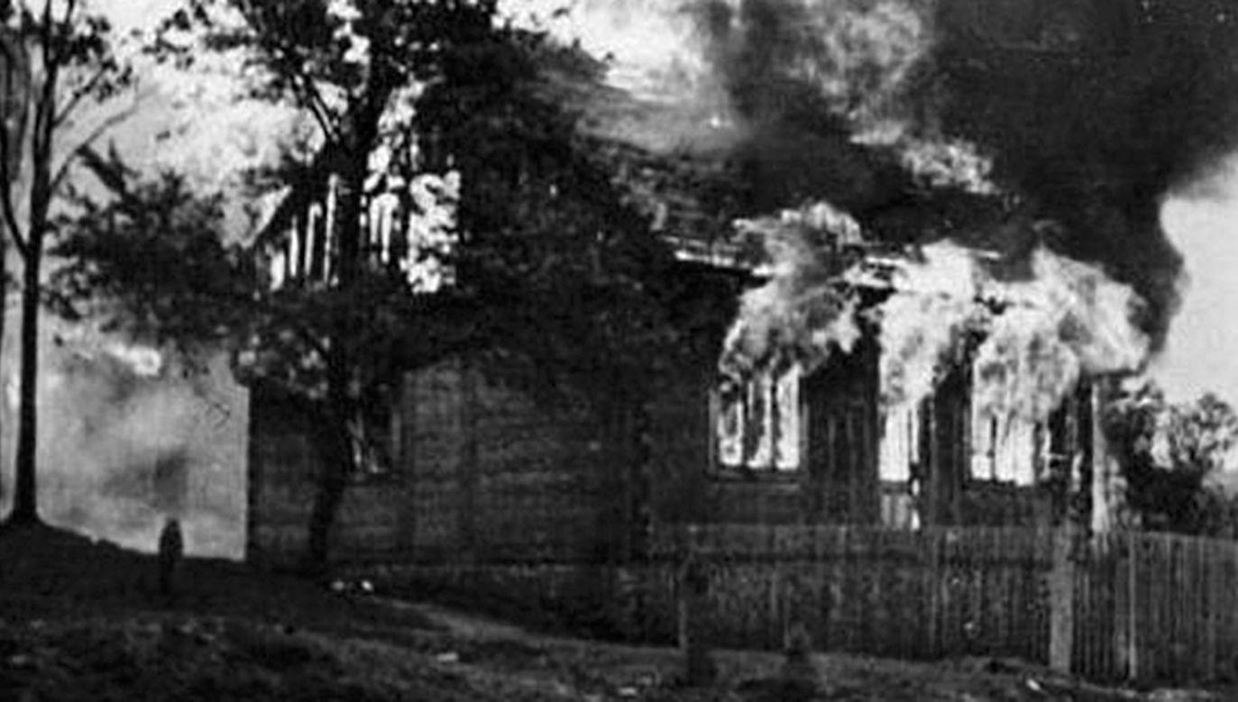 UPA podpaliła szkołę, urząd gminy, dwór i osiem gospodarstw (fot. commons.wikimedia.org)