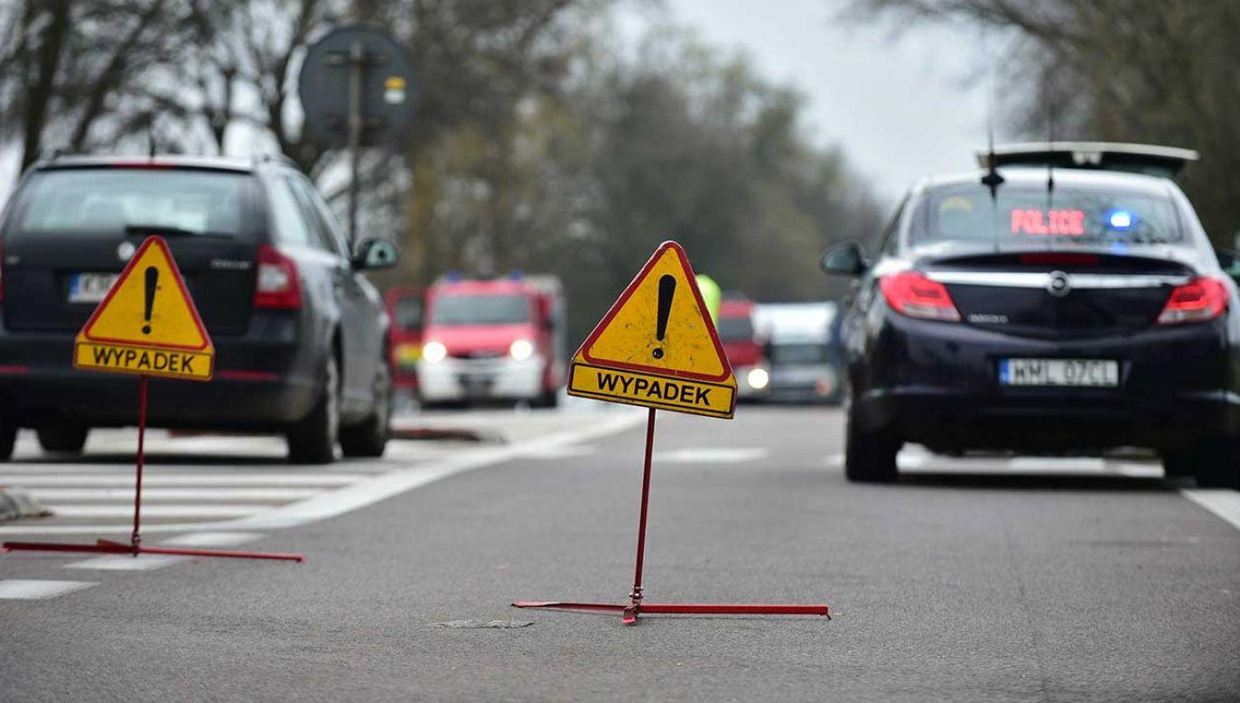 Samochód wypadł z drogi i uderzył w drzewo (fot. arch. PAP/Przemysław Piątkowski)