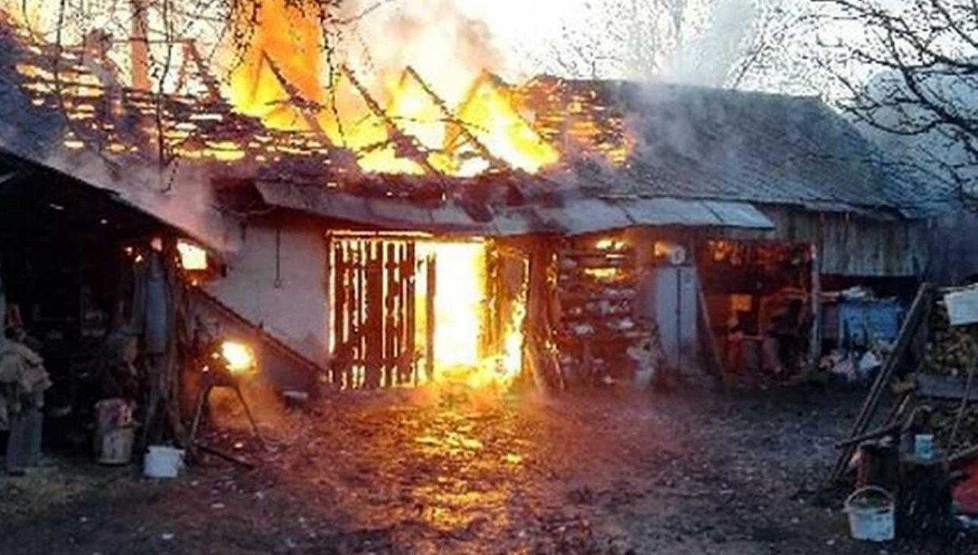 Pożar zaalarmował sąsiadów (fot. KMP w Elblągu)