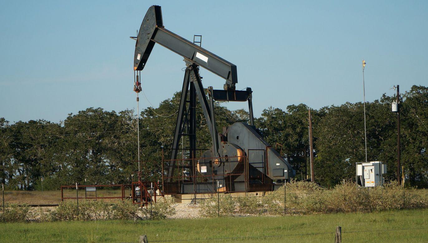 Problemy z dostawami rosyjskiej ropy zaczęły się 19 kwietnia, gdy białoruskie służby odpowiedzialne za tranzyt paliwa zauważyły gwałtowny spadek jakości surowca (fot. pixabay.com/awsloley)