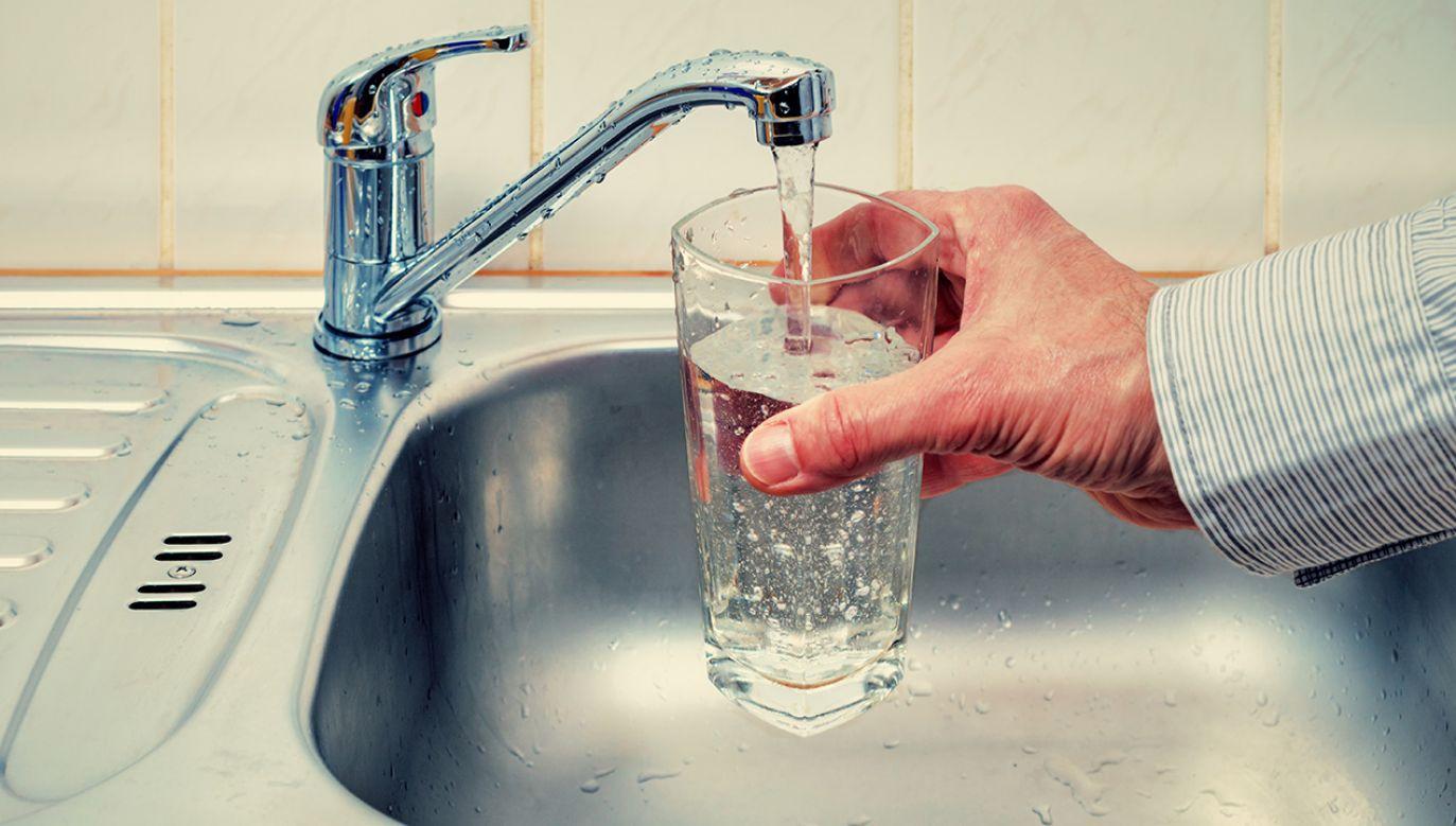 (fot. Shutterstock/science photo)