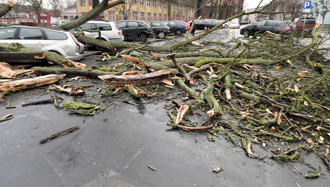 IMGW wydał ostrzeżenia (fot. PAP/Marcin Bielecki, zdjęcie ilustracyjne)