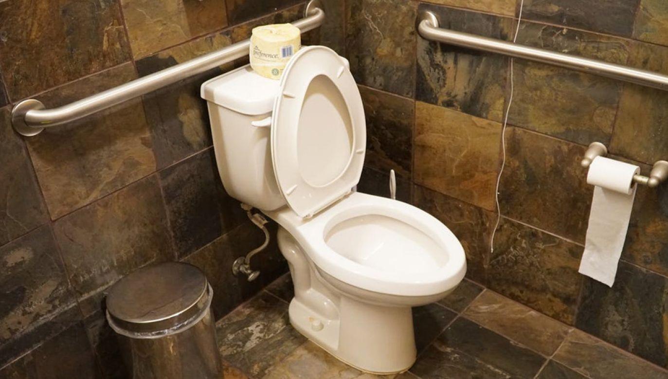 Toaleta to dla wielu wciąż niedościgłe marzenie (fot. Pexels)