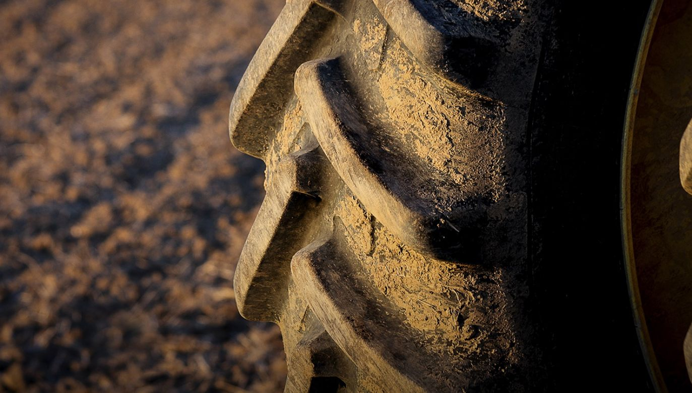 Powodem wypadku była śliska od deszczu nawierzchnia (fot. Shutterstock/Warren Design)