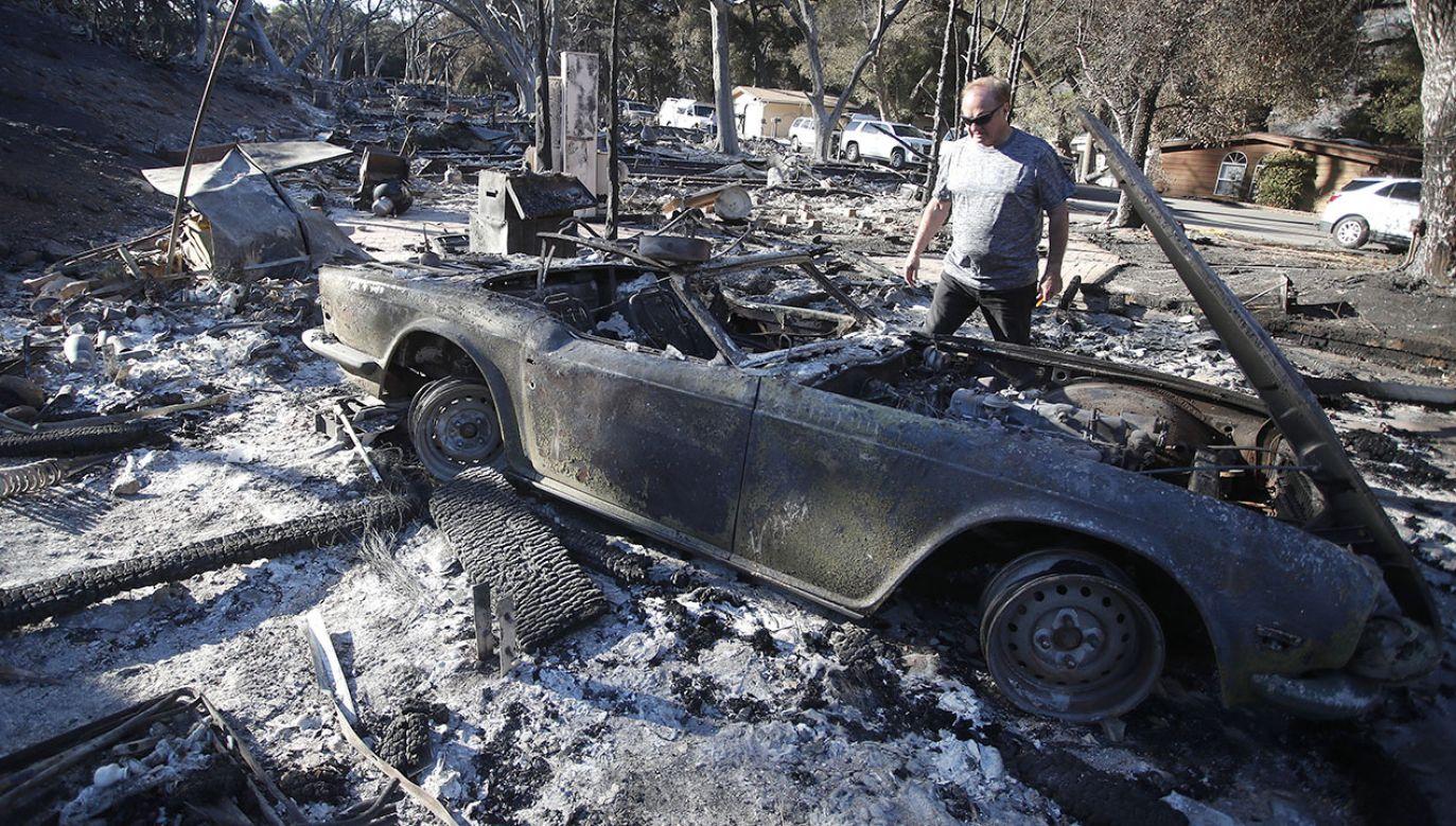 W pożarach zginęło co najmniej 56 osób (fot. PAP/EPA/MIKE NELSON)