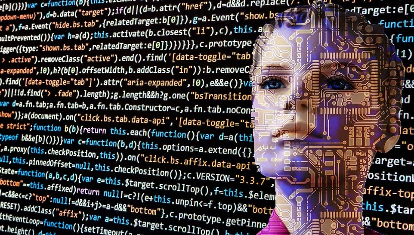 Sztuczna inteligencja popełnia błędy (graf. Pixabay/geralt)