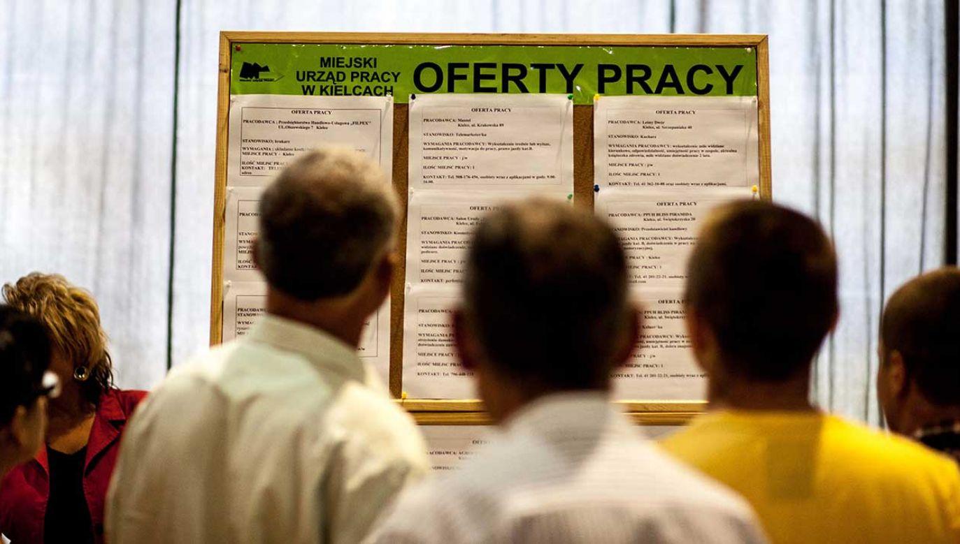 Ministerstwo pracy poparło poselski projekt zobowiązujący do wskazywania stawki już na tym etapie (fot. arch. PAP/Michał Walczak)
