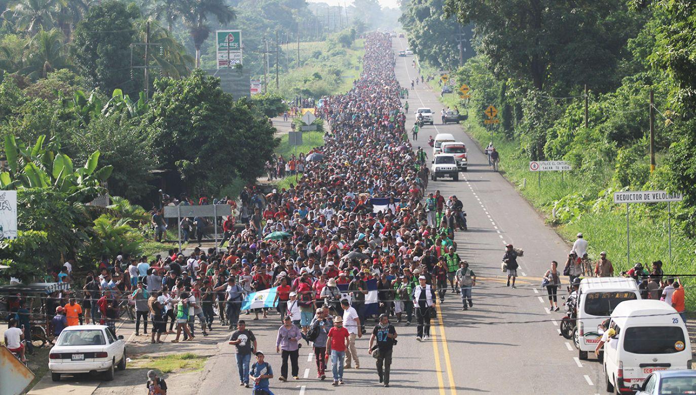 Zatrzymanie nielegalnej imigracji było jedną z obietnic wyborczych Donalda Trumpa (fot. PAP/EPA/Maria de la Luz Ascencio)