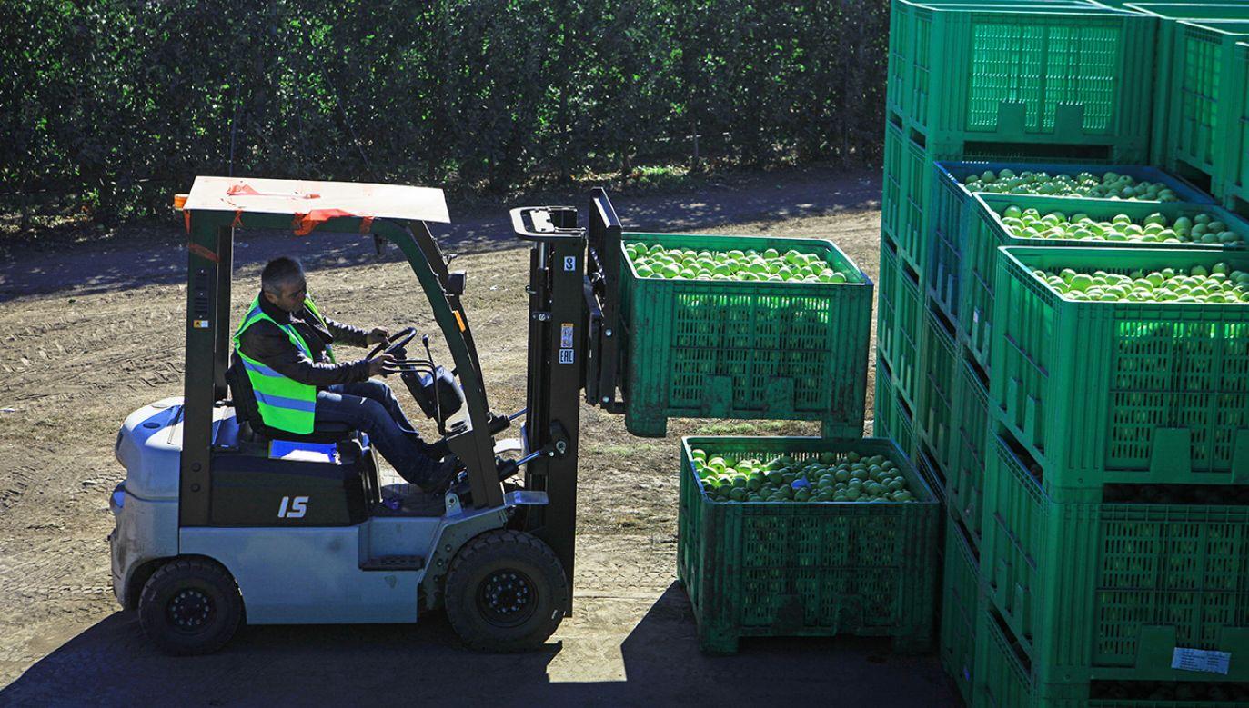 Latem Putin podpisał dekret o przedłużeniu do końca przyszłego roku embarga na dostawy produktów żywnościowych z Ukrainy (fot. Denis Abramov\TASS via Getty Images)