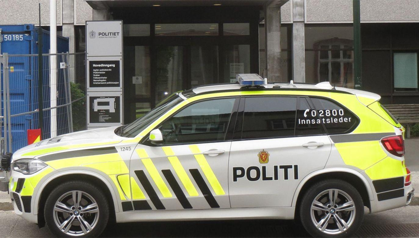 Policja zatrzymała 22-letnią studentkę za jazdę pod wpływem alkoholu (fot. Wiki/Carsten R D)