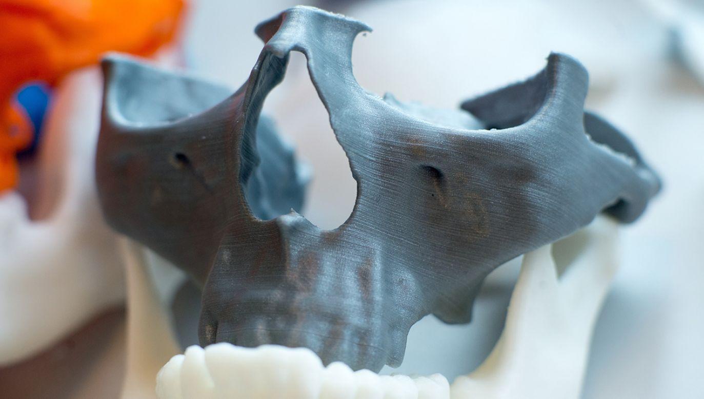 Pokaz najnowocześniejszego sprzętu umożliwiającego wydruk kości techniką druku trójwymiarowego w łódzkim Bionanoparku (fot. arch. PAP/Grzegorz Michałowski)