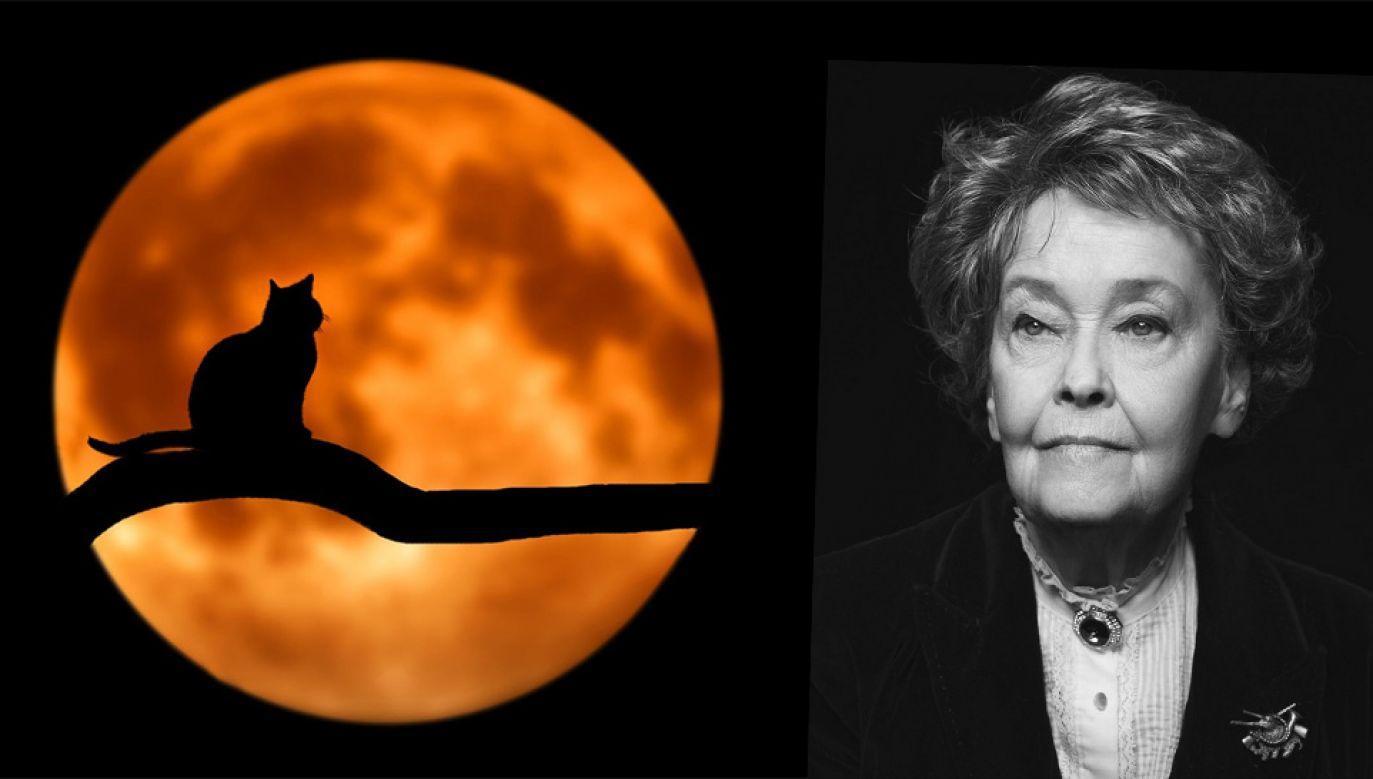 Lorraine Warren miała wraz z mężem zbadać ponad 10 tys. zjawisk uważanych za paranormalne (fot. Pixabay/TT/Horror Lover)