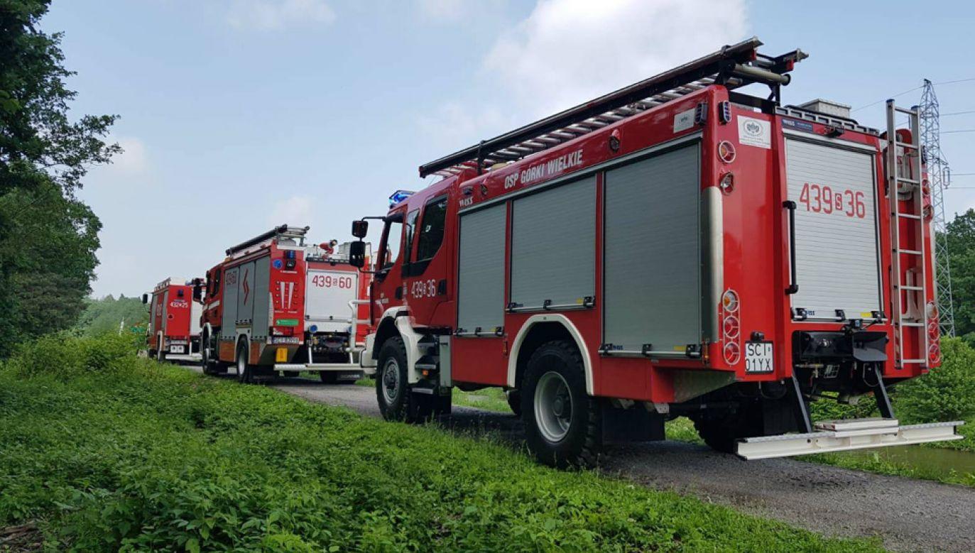 Złapanie byka zajęło strażakom około godziny (fot. OSP Górki Wielkie)